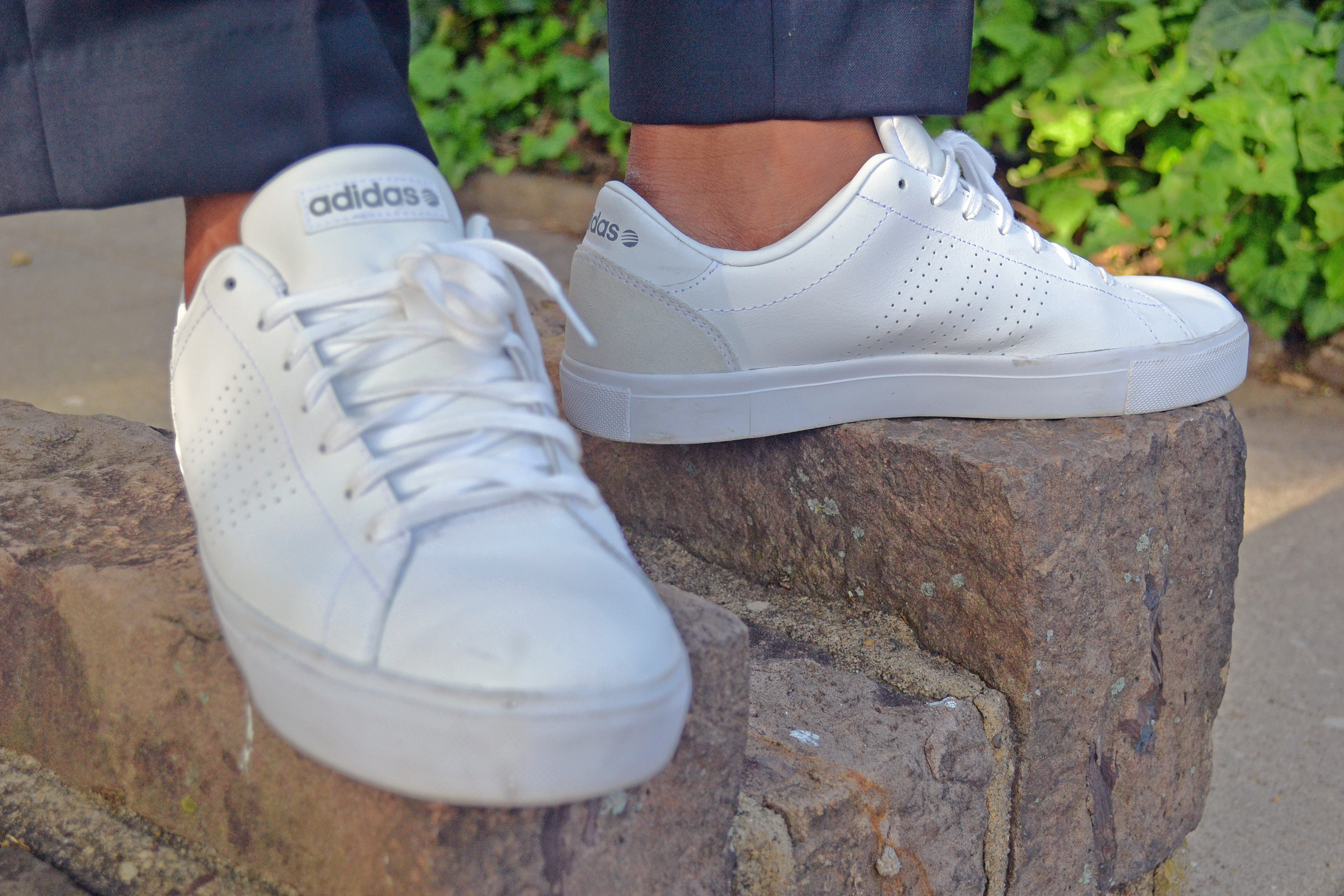 Men's Style Pro In Adidas White Neo Daily Clean Low Tops